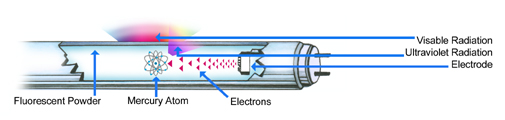 How a Fluorescent Light Tube Works